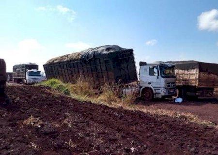 Motorista canavieiro morre esmagado entre Cristalina e Fátima do Sul