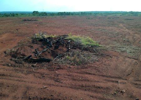 Paranaense é multado por furar poço em fazenda de Nova Alvorada do Sul