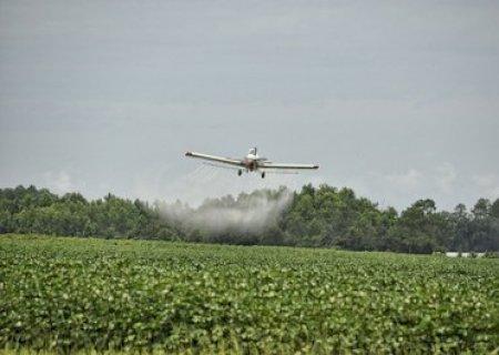 Glória Dourados deve explicar ao STF lei que proíbe pulverização aérea