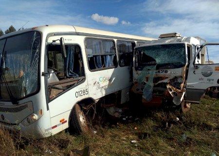 Acidente entre ônibus e caminhão deixa 5 feridos em Guassulândia