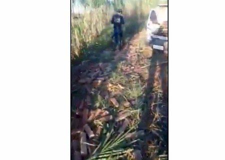 Em Glória de Dourados, PM e Polícia Civil encontram veículo com maconha