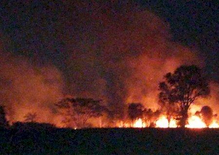 Incêndio destrói cerca de 100 hectares de vegetação em Fátima do Sul