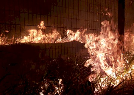Incêndio que destruiu 80 carros alastra para terreno vizinho na capital