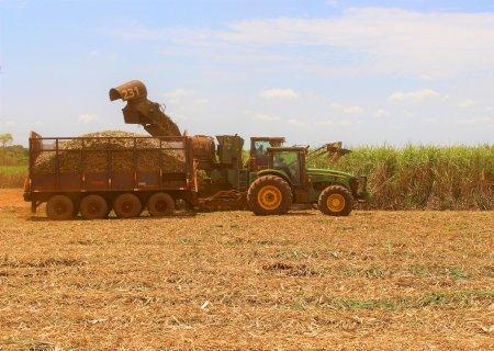 Moagem de cana-de-açúcar atinge 32 milhões de toneladas em MS
