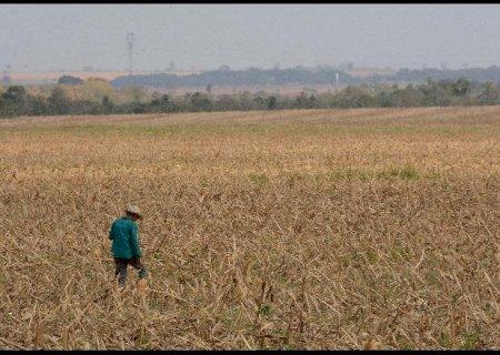 Prazo para regularização do Cadastro Ambiental Rural vai até o dia 31 de dezembro