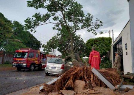Chuva e ventos fortes causam estragos na Capital