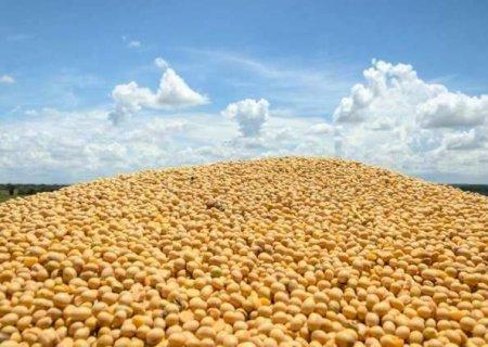 Plantio atinge 90% e MS estima produção de 11,5 milhões de toneladas de soja