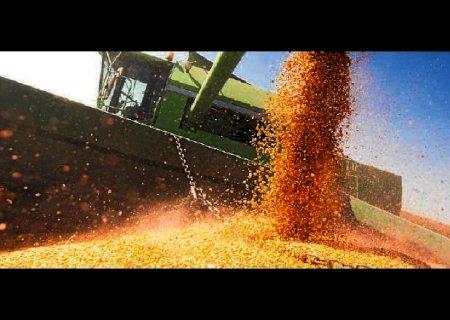 Crédito rural terá aplicação de R$ 233 bilhões