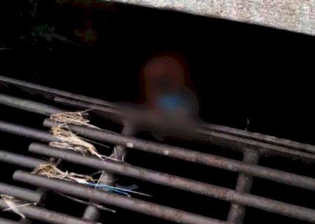 Morador de rua é encontrado dentro de bueiro para fugir do frio em Jundiaí (SP)