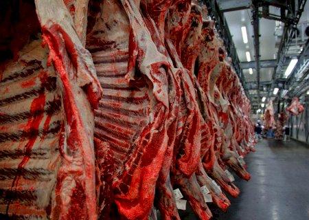 Carne bovina: governo argentino garante retomada das exportações na próxima semana
