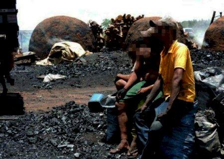 Dono de siderúrgica é condenado a 5 anos, perda de fazenda e R$ 1,3 mi por trabalho escravo em MS