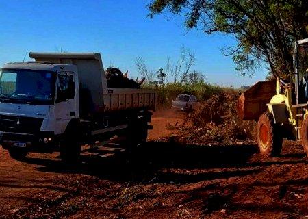 Agesul retira 800 toneladas de lixo das margens da MS-156 em Dourados