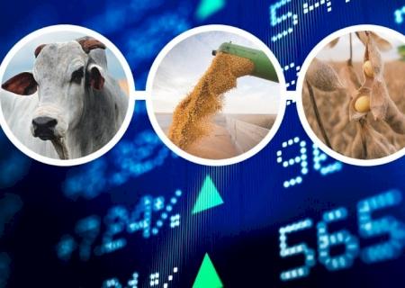 Quarta-feira: Confira as cotações da principais commodities no MS
