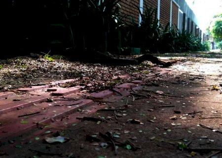 Chuva e ventos causam alagamentos e deixam rastro de sujeira em Dourados
